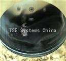 TSE动物代谢活动系统